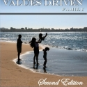 The Values-Driven Family paperback
